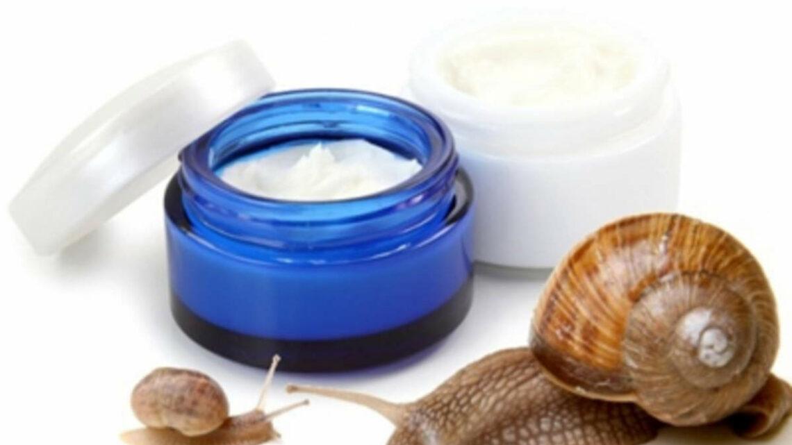 Le proprietà della bava di lumaca per la skincare quotidiana per pelli miste